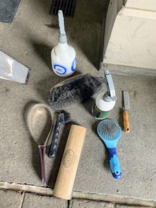 All the daily grooming tools are kept nearby for easy access. Tools, such as combs and curries, are also treated to a disinfectant soak and thorough rinse after every use to help protect against skin infections.