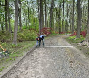 This road that winds through the maple woodland is 10-feet wide. Pete, who has been doing a lot of detailed road edging around the farm, is excellent at any job that requires lots of precision work. Here, he uses a long piece of wood that measures exactly 10-feet, so he can know exactly where the edge will be.