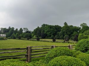 Walking down the Boxwood Allee, the skies look eerily gray over the paddocks and the tree line.