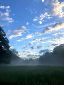 Liz also likes to capture images of the sky as the fog dissipates. Here, more fog lifts over the field. Dense fog is when visibility is at least one-quarter mile or lower. And, when fog mixes with air pollution, it's called smog.