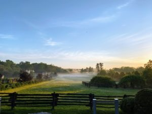 I took this photo very early in the morning before 6am. I love seeing the early morning fog over the paddocks. During this time when the temperature is lower near the ground, if there is enough humidity in the air, haze and fog will form.