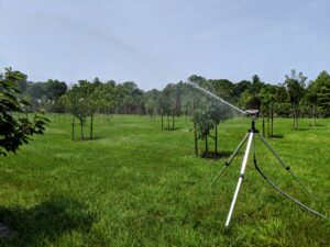 This is one of several tripod sprinklers in my large orchard. Every day when I go out to check on the gardens and pets, I move many of the sprinklers myself, so every tree gets a good drink.