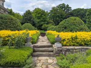 And here is the beautiful Upper Terrace Parterre with the boxwood and bold golden yellow barberry. Barberry is a tried-and-true classic throughout the season with its vibrant foliage.