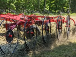 Here is a closer view of how the rotary tines turn over the hay.