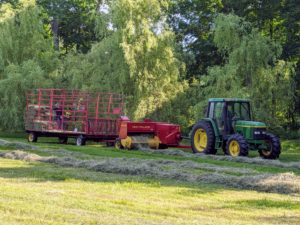 All the hay is dry and passing through the machine smoothly. If the hay is properly dried, the baler will work continuously down each row. Hay that is too damp tends to clog up the baler.