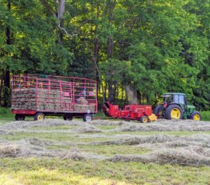 Carlos reminds everyone that he can only bale until about 6pm as the evening weather tends to generate more moisture in the hay. In all, it took about three days to bale all the hay at the farm.