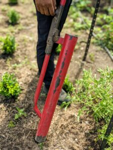 Domi uses this manual post driver made out of steel. It is designed to pound uprights into the ground without damaging the tops.