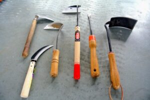 There are many types of tools that help with weeding. I prefer the short hand-tools best, so as not to disturb any of the neighboring non-weed specimens.