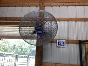 Because Labradors are double-coated and summers are incredibly hot where I live, I installed the largest fans I could safely put into the kennel. These fans oscillate and keep my dogs cool. These fans are great for kennels, barns, and greenhouses. They are not too loud and have mist features. It is so important to provide animals, including livestock, with some kind of cooling. A dog's skin is thinner than that of a human, and their regular body temperature is higher, so they require extra protection during the hot months.