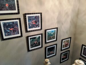 Here's a view from the top of the staircase once all the photos are hung.