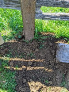 And then it is backfilled with a shovel.