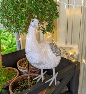 These Peacock Figures were inspired by my own white peacocks at the farm. I have 17-peafowl now - all lively and curious.