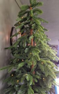 Another tree is this 48-inch Downswept Green Potted Tree - it looks so lifelike. It's pre-lit with 50 white LED lights. It also comes in a 36-inch size. They look great separately or grouped together.