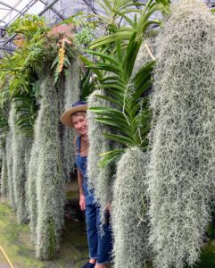 Dennis also gave us a quick tour through the greenhouse. Here I am with the Spanish moss used to keep the humidity up for the vanda roots.