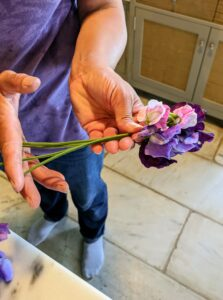 Elvira gathers a few stems in varying colors. She shows how they will be trimmed to the same length keeping in mind the size of the container.