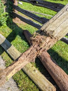Here's a closer look at what has happened over the years – these posts were definitely in need of replacing.