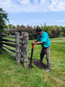 Pete digs around the old post by hand using a post hole digger, a hand tool used to manually dig deep and narrow holes in order to install fence posts. A post hole digger is also known as a clamshell digger, because of its resemblance to the seaside shell.
