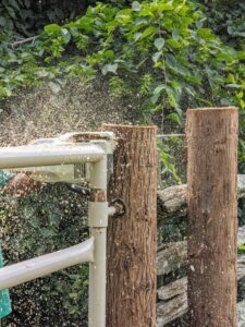 Finally, Pete cuts the post, so it is just a bit higher than the topmost railing of the gate.