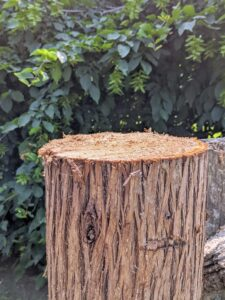 In just a couple minutes, the post is cut. This post should last another 15-years or more. It is made of cedar. Cedar is extremely durable and holds up well to outdoor weather conditions.