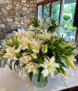 After a few weeks of cutting 30 to 40 lilies every few days, this was the very last crop to be harvested. Lilies do incredibly well in vases and always bring a redolent smell into the house.
