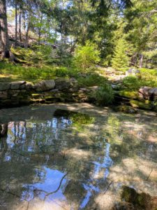 Here one of two Jens Jensen–designed lost pools with its natural stone formation.