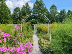 This is one of the many ethereal views in the flower garden. It has become another favorite place to visit.