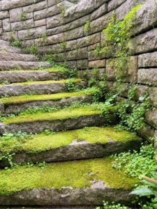 These moss-covered steps lead up to Aristide Maillol's 'La Riviere'.