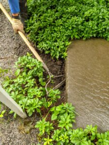 Here, Chhiring rakes out some of the debris that has blocked this drain near my front gate.