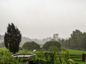 The rain soon followed. Here is a view from my terrace parterre looking out onto the paddocks.