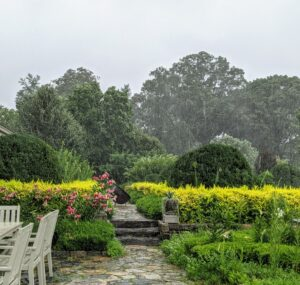 In this photo, one can see the heavy rain over my terrace parterre just outside my Winter House.