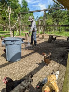 Dawa also rakes every yard thoroughly, leveling the gravel and removing any debris.