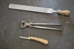 Here are Linda's tools - a rasp, nippers, and a hoof knife.