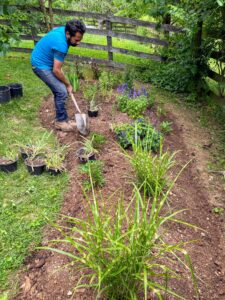 I am a strong believer that a garden is never done and that you can never have enough! This garden was started a day or two before my birthday in June in the gym backyard. Here, Lorenzo begins strategically planting the plants I had selected for this garden. This fall I intend on making at least two more flower gardens: one for next year's lilies and a bonafide cut hydrangea garden. I look forward to watching this garden mature over the next few years and adding plants.