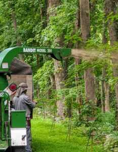 Whenever possible, the wood chips are blown directly into the woodland.