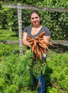Here's Enma with a bunch of beautiful carrots. Most are familiar with the orange color, but they also come in red, yellow, white and purple.