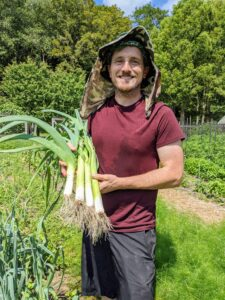And Ryan picked some leeks - these look terrific. The edible portions of the leek are the white base of the leaves, the light green parts, and to a lesser extent, the dark green parts of the leaves. The leek is a vegetable in the genus Allium. They have a mild onion-like taste and smell. In its raw state, they are also very crunchy and firm.