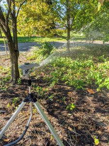 Never direct hard spraying sprinklers at trees – this may mar the bark. Instead, use harder sprays for open spaces and wide lawn areas.