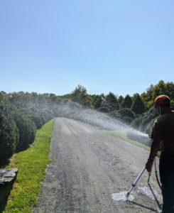 Look how far the sprinkler can reach – and the spray is very consistent.