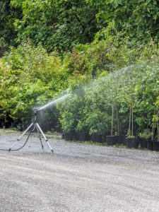 This tripod sprinkler is used for the tree seedlings that are being maintained and nurtured behind my stable. The adjustable tripod can reach a height of 58-inches and can water everything from above. Once the watering in one area is done, it's important to turn off the water at the source. Just turning off at the sprinkler puts a lot of pressure on the hoses and pipes.