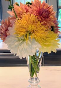 Here's another arrangement on my servery counter - the color combination of yellow, white and pink looks so pretty in this glass vase. Always strip off all leaves that would be below the water line in the vase. This is true for all flower arrangements, not just dahlias. When leaves stay underwater, they decay and release bacteria that shorten the vase life of the flowers. And change the water daily so they look fresh and last longer.