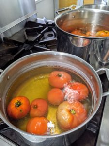 The next step is to place them in a pot of boiling water – just long enough for the skins to soften and loosen.
