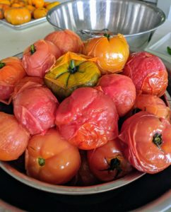 Once the tomatoes are removed from the ice-water, they're ready to be peeled and seeded – see the skins? They are already separating.