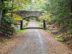 Cheryl took this photo earlier this month just as the leaves were starting to turn. This is the Jordan Pond Bridge built in 1920. This carriage road bridge is 85 feet long, 19.5 feet tall, and may still have some of Beatrix Cadwalader Farrand's plantings surrounding it. Beatrix was a landscape gardener and architect whose career included commissions to design more than 100 gardens for private residences, estates and country homes, public parks, botanic gardens, college campuses, and the White House.