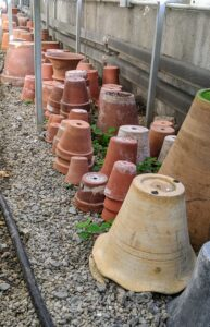 We store many of the empty pots underneath the sliding tables where they can be accessed quickly. Clay and terra cotta containers can be stored anywhere where the temperatures will not fall below freezing.