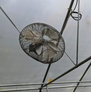 This hoop house also has three large fans positioned up high to provide better air circulation when needed.