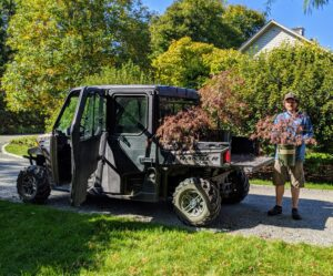 Ryan transported a total of 14 Japanese maples from outside the Equipment Barn to the edge of the Tenant House garden. Our Polaris Ranger is excellent for moving plants around the farm - we use these vehicles every day.