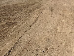 On the right - smooth, harrowed soil. On the left - the area still left to do.