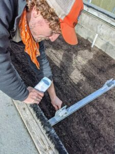 Ryan sprinkles the seeds in the furrows. The frame was designed for easy reach from all sides.