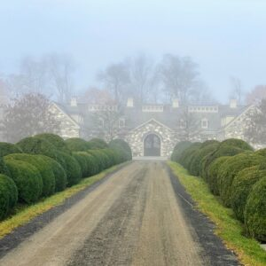 This photo was taken as I drove down the long Boxwood Allee – everything is much greener as the fog disappears. On this day, the fog lifted revealing a bluish sky.