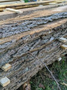 """Pieces cut with the natural bark still intact are """"live edged."""""""